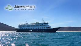 Cruises on the Sea of Cortez