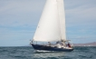 Sailing Charter on the Sea of Cortez