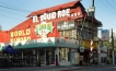 Squid Roe, one of the most famous bars in Cabo San Lucas