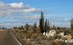 In the High Desert on the Transpeninsula Highway in Baja