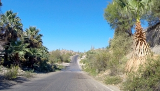 Baja Highway Mex 1 Cataviña Spring crossing
