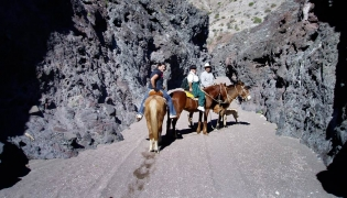 Author Sarah Markworth taking to the trail, horseback in Baja