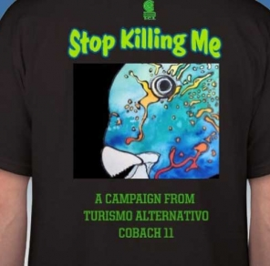 Save the Parrot Fish in the Sea of Cortez