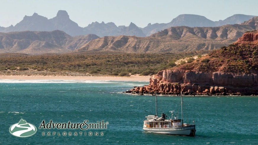 The Westward cruising the Sea of Cortez – Photo Wendy Shattil