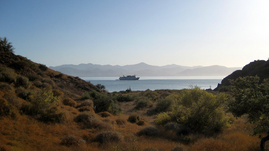AdventureSmith Explorations cruise your adventure on the Sea of Cortez