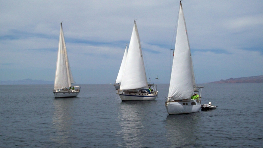 Sailboats racing on the becalmed waters of the Bay of La Paz