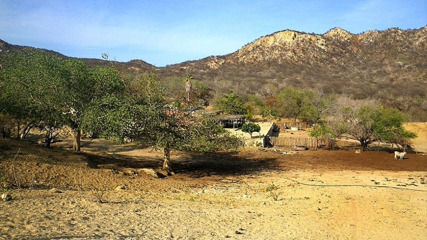 Secluded rancho in a green arroyo north of Cabo San Lucas