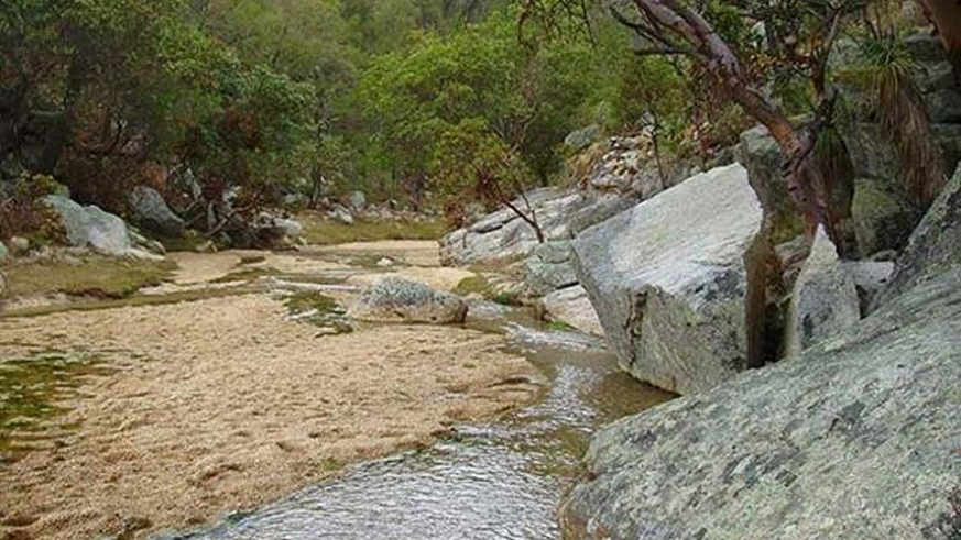 Creekbed in the Sierra Laguna