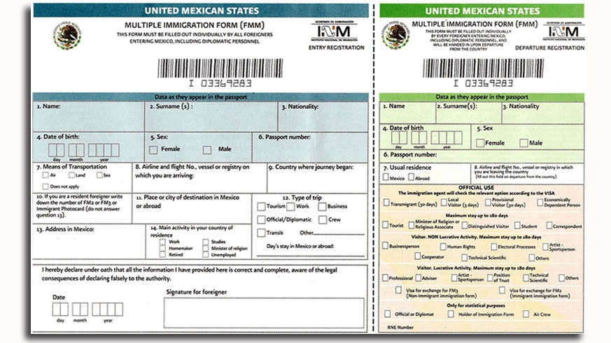 Front side of the Mexican Tourist Visa good for a max of 180 days