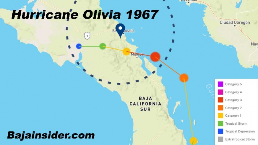 Hurricane Olivia is the only storm to cross the peninsula and strengthen in the Sea of Cortez to become one of 3 Major Hurricanes.