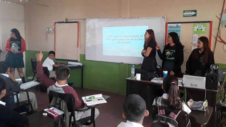 Students make presentations to other students, on the importance of parrotfish conservation
