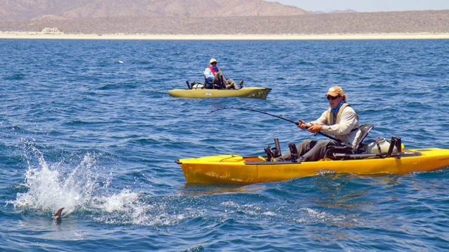 These peddle kayaks leave your hands free to haul in the big fish