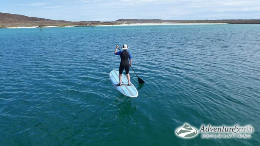 Stand-up paddle boarding on the Sea of Cortez