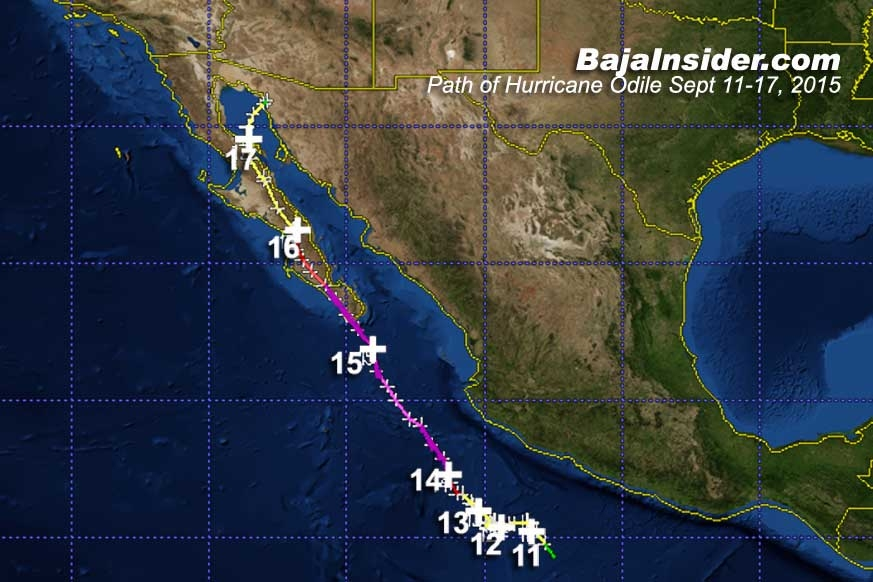 Track of Hurricane Odile Max Category 4 Max Sustained Winds 115kts.